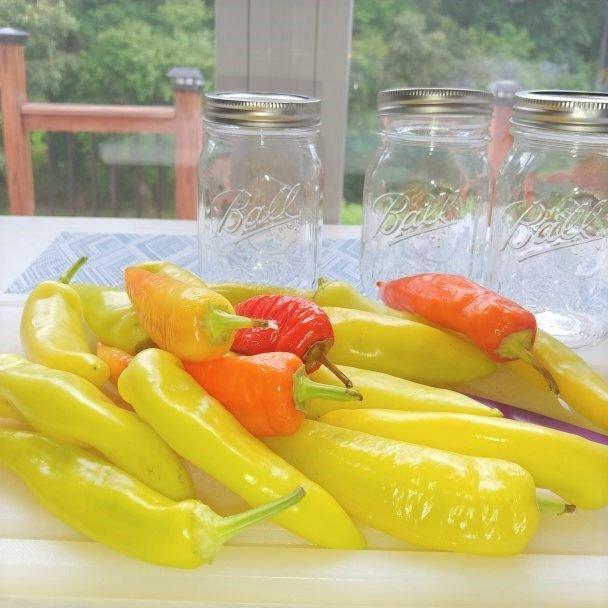 pickeld banana pepper recipe