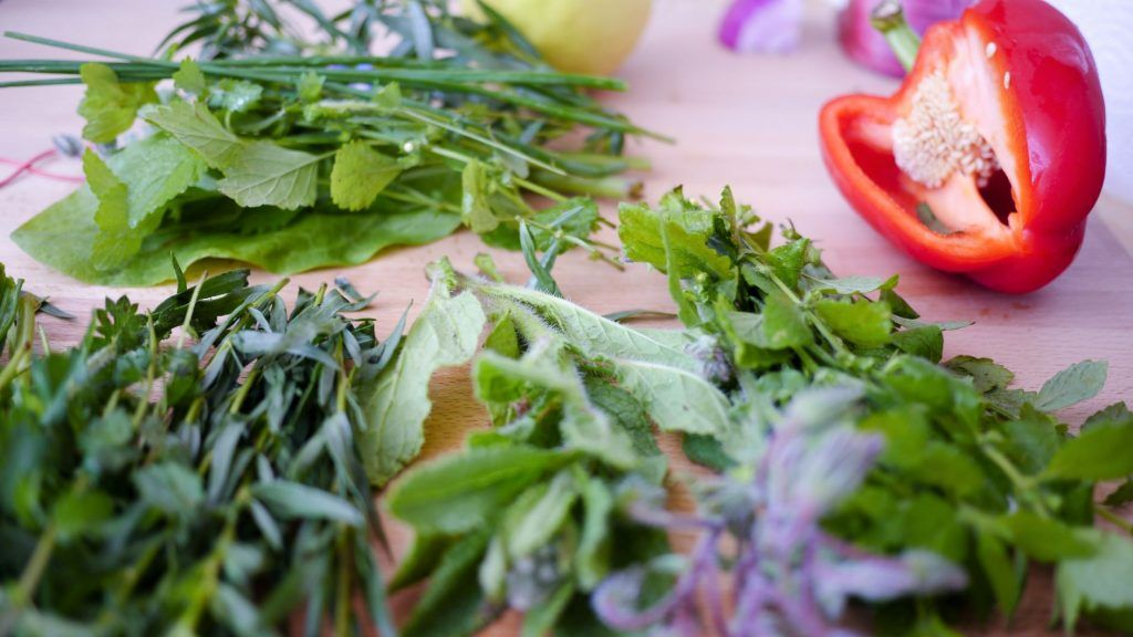 best herbs for companion planting