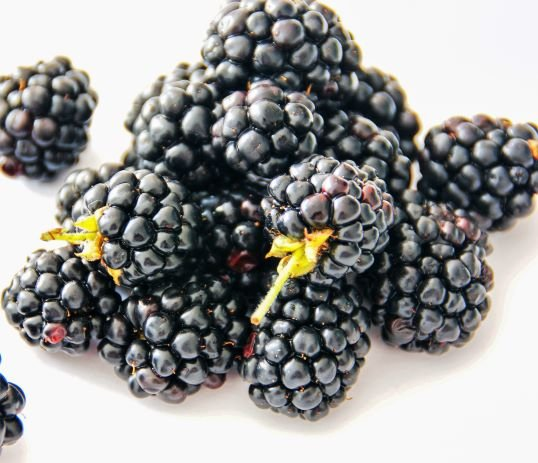 ripe blackberries on a white plate